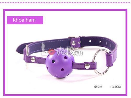 Bộ đồ chơi bạo dâm 8 món màu tím QT05 khóa miệng